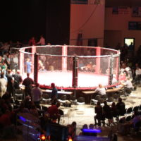 MMA fights in Arena